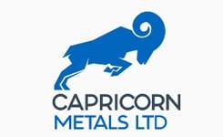 Capricorn-Metals